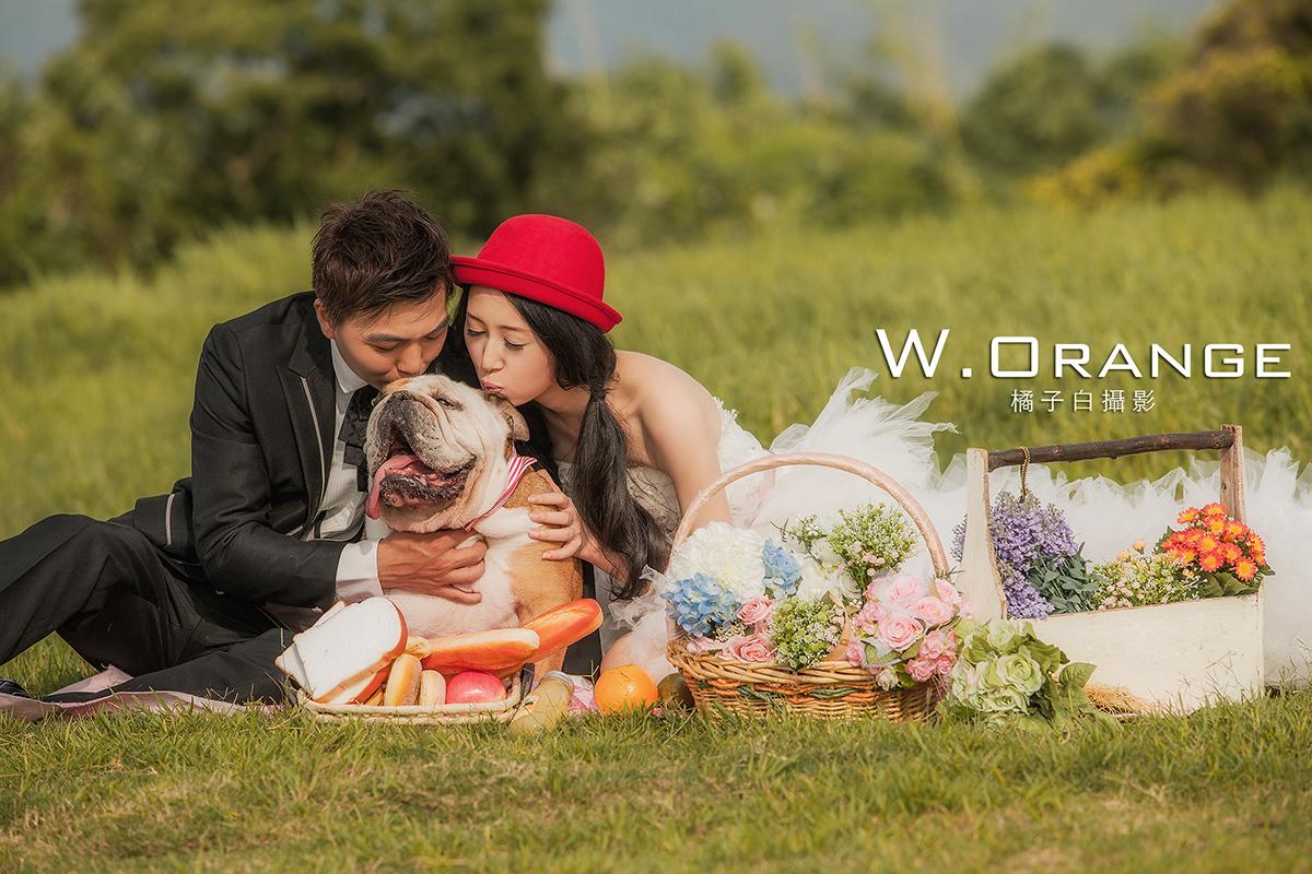 自助婚紗,自主婚紗,寵物婚紗,鬥牛犬,野餐,淡水莊園,攝影基地